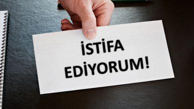 Trabzon Mor Balık LGBT