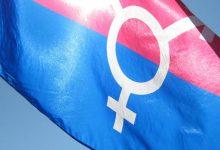 trans bayrağı